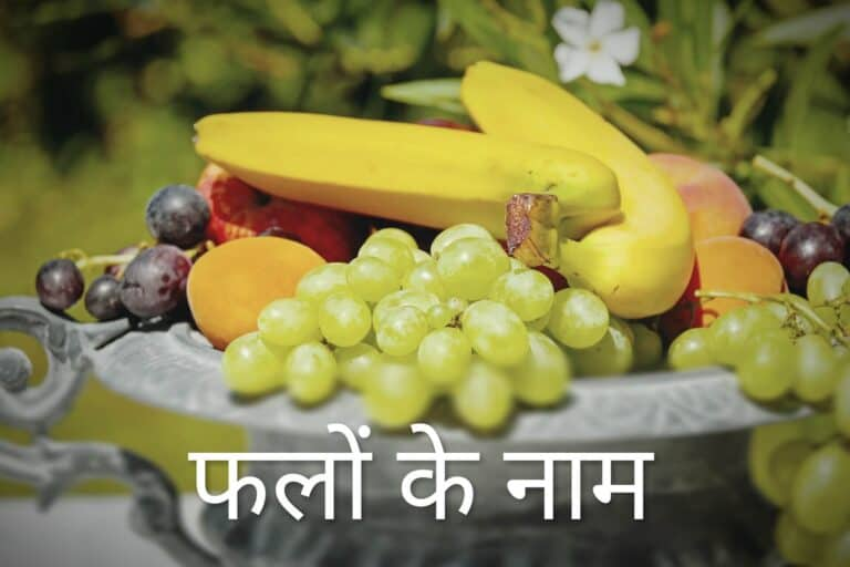 Fruits Name in Hindi & English 1