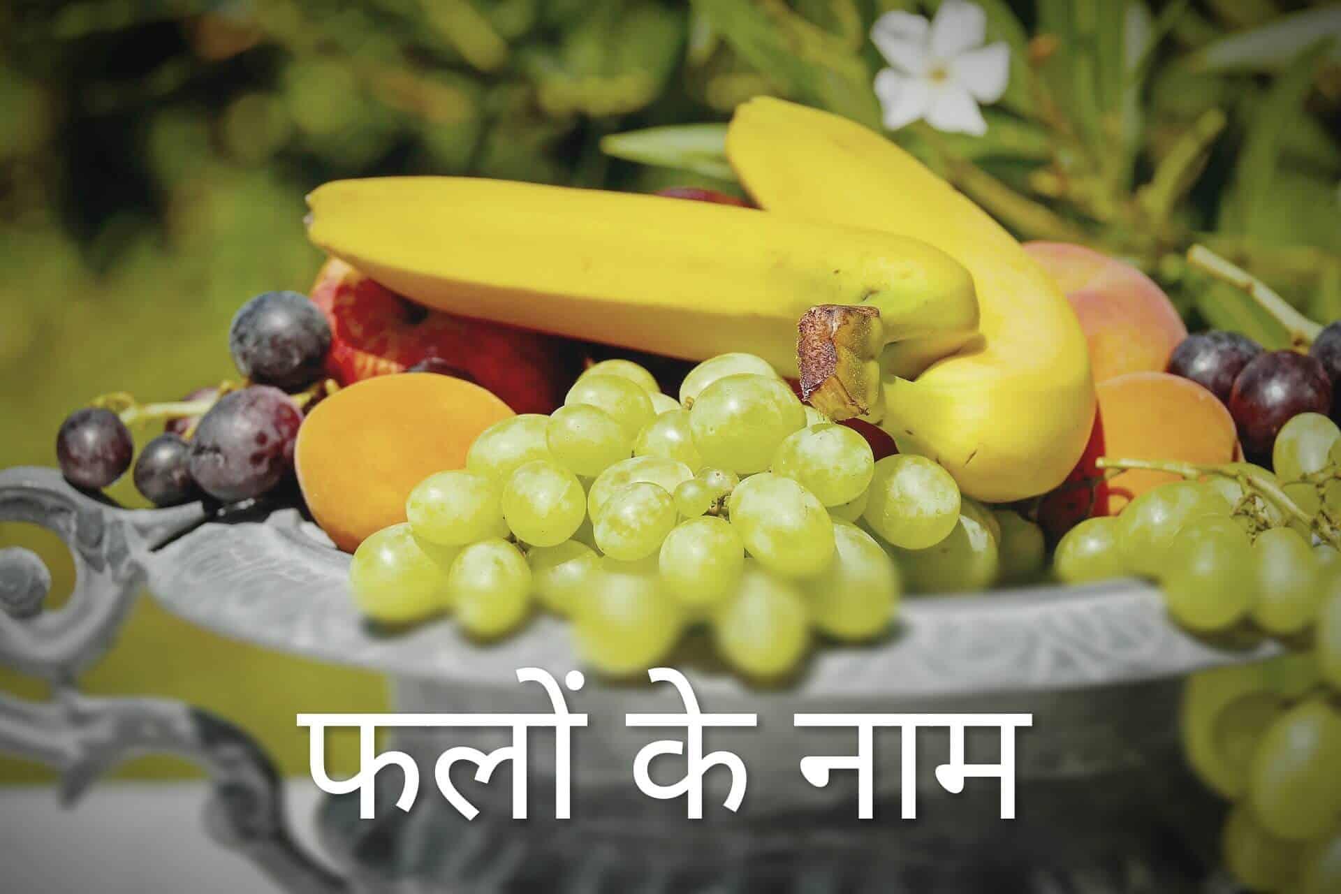 Fruits Name in Hindi & English 1